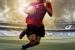rugbywing